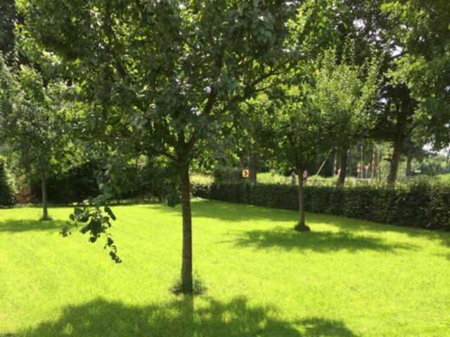 Bed and Breakfast Lettele Afbeelding tuin, entree, grasveld, gazon, uitzicht, lettele, moestuin, speelveld B&B Kanaalzicht Averlinde